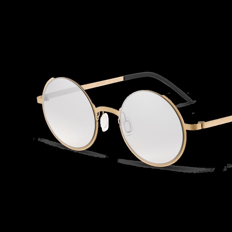 L8-SG-亮银色镜片+香槟金色镜架-02@2x.png TAPOLE