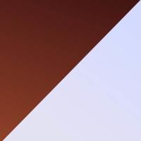 A9-SG-樱花紫色镜片+玳瑁棕色前框@2x.jpg TAPOLE