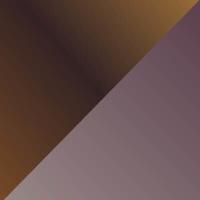 A15-SG-亮金色镜片+浅玳瑁色前框@2x.jpg TAPOLE