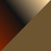 P14-SG-棕色镜片+玳瑁色前框@2x.jpg TAPOLE